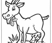 Free coloring and drawings Goat eating Coloring page