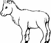 Free coloring and drawings Kid Coloring page