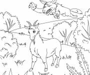 Free coloring and drawings The Goat and the Wolf Coloring page