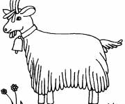 Free coloring and drawings The Poitevine Goat Coloring page