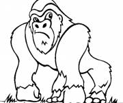 Free coloring and drawings Cartoon gorilla Coloring page
