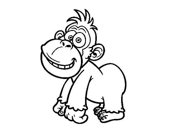 Free coloring and drawings Funny little gorilla Coloring page