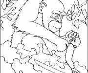 Coloring pages Gorilla cares for her cub