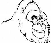 Coloring pages Gorilla head