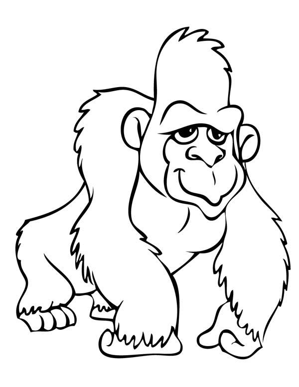 Free coloring and drawings Gorilla to download Coloring page