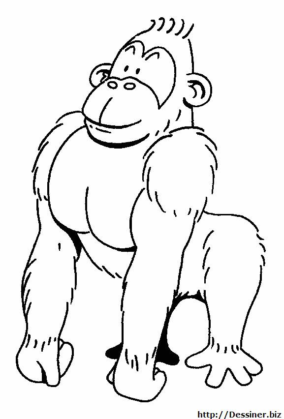 Free coloring and drawings Strong gorilla Coloring page