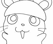 Coloring pages Cartoon hamster