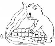 Coloring pages Hamster eating