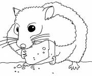 Coloring pages Hamster eats cheese