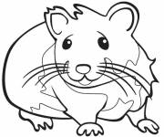 Coloring pages Hamster for children