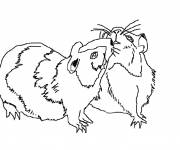Coloring pages Russian hamsters online