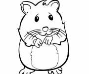 Coloring pages Shy hamster