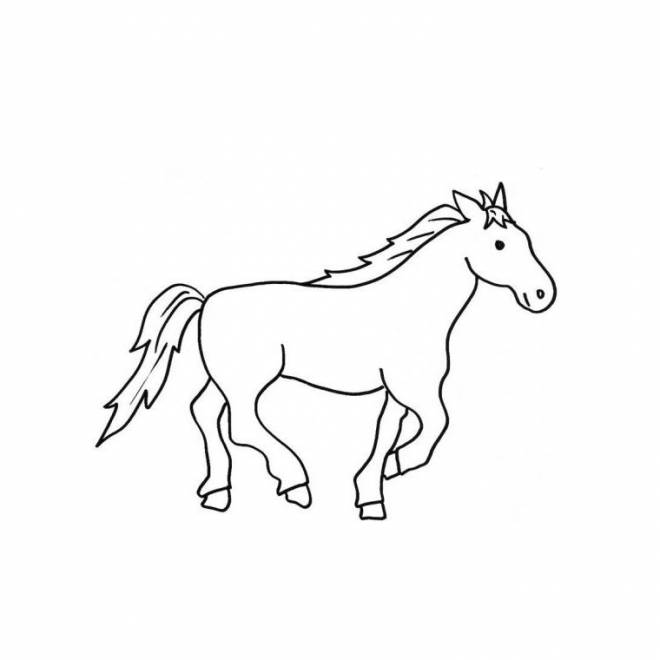 Free coloring and drawings a little drawing of a galloping horse Coloring page