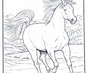 Coloring pages Horse black and white drawing