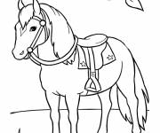 Coloring pages Horse in nature