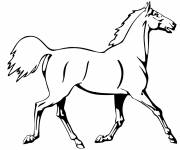 Coloring pages Horse trotting