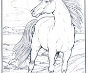 Coloring pages Horse with mane blowing in the wind