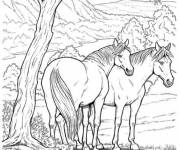 Coloring pages Horses in the forest