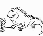 Free coloring and drawings Iguana and flower Coloring page
