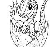 Free coloring and drawings New born dinosaur Coloring page