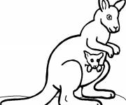 Free coloring and drawings Color kangaroo Coloring page