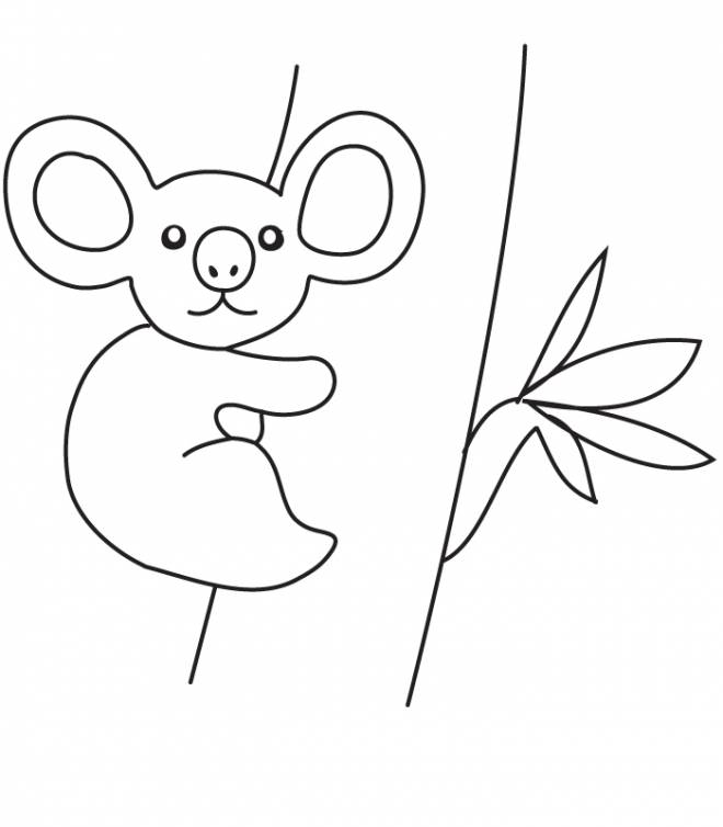 Free coloring and drawings A Baby Koala Coloring page