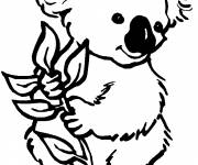 Coloring pages Coloring koala