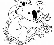 Free coloring and drawings Koala and her baby Coloring page