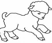 Free coloring and drawings A little lamb Coloring page