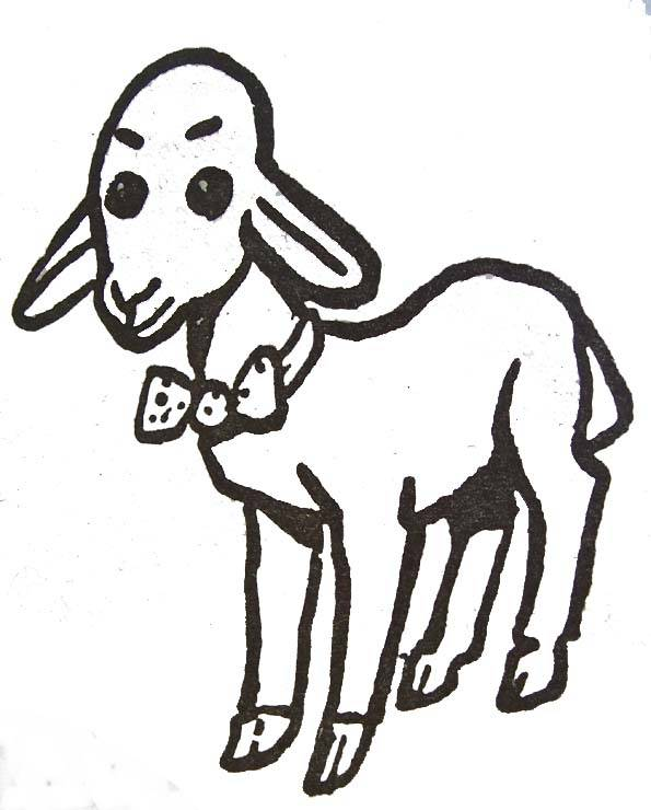 Free coloring and drawings Colored lamb Coloring page