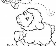 Free coloring and drawings Lamb and butterfly Coloring page
