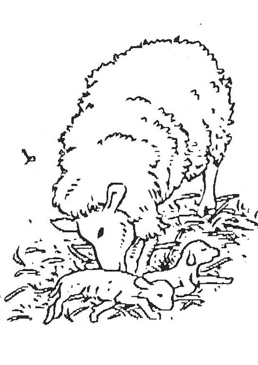 Free coloring and drawings Lamb and mother Coloring page