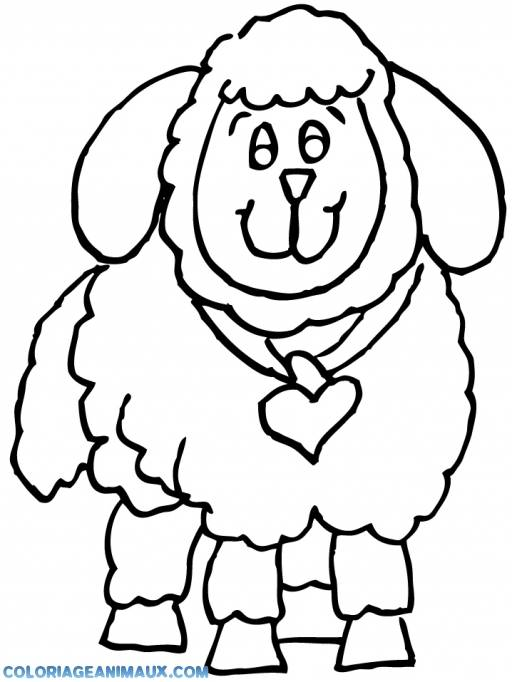 Free coloring and drawings Lamb wearing a heart shaped knot Coloring page