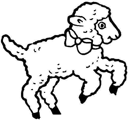 Free coloring and drawings Lamb with knot Coloring page