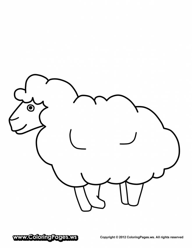 Free coloring and drawings Sheep Coloring page