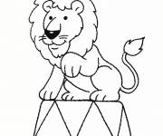 Coloring pages Circus lion