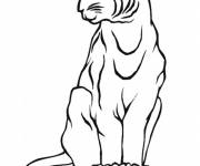 Free coloring and drawings Lynx simple Coloring page