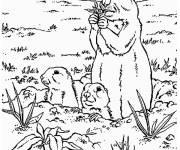Free coloring and drawings Groundhog and cubs Coloring page