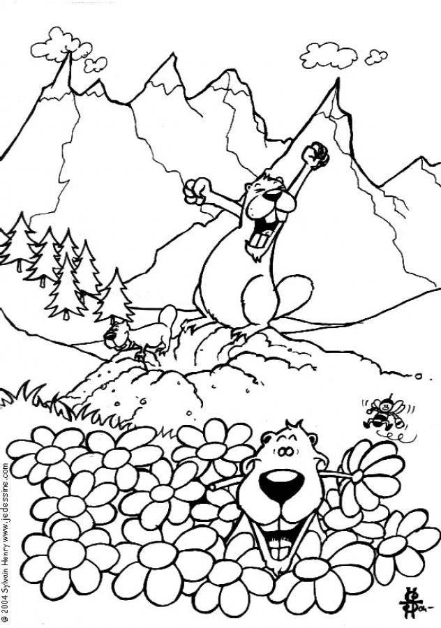 Free coloring and drawings Groundhog wakes up Coloring page