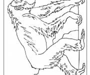 Coloring pages Gorilla drawing