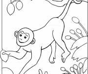 Coloring pages Monkey in a tree