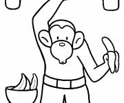 Coloring pages Monkey in color