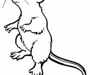 Coloring pages Mouse standing