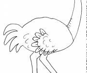 Free coloring and drawings Humorous ostrich Coloring page