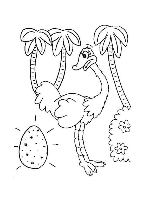 Free coloring and drawings Ostrich and Egg Coloring page