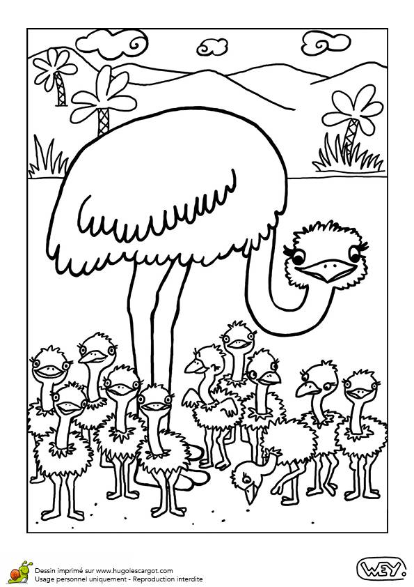 Free coloring and drawings Ostrich and its young in the forest Coloring page