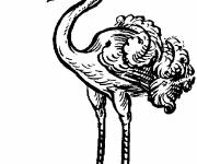 Coloring pages Ostrich and Worm