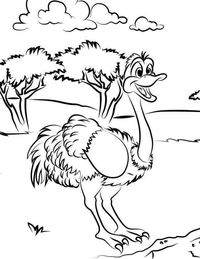 Free coloring and drawings Ostrich has fun in nature Coloring page