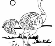 Coloring pages Ostrich under the sun
