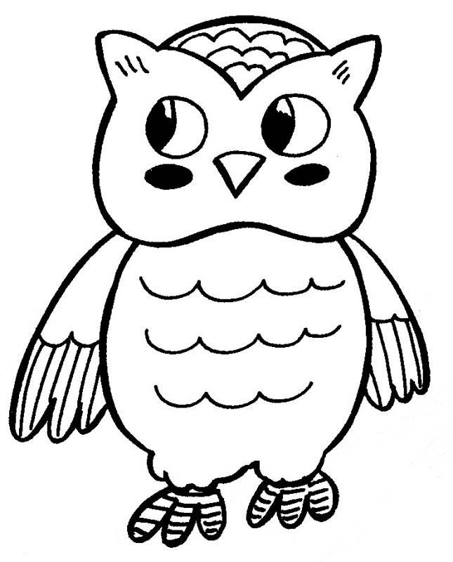 Free coloring and drawings A beautiful Owl Coloring page